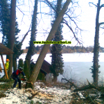 www.toaletare-arbori.ro (19)